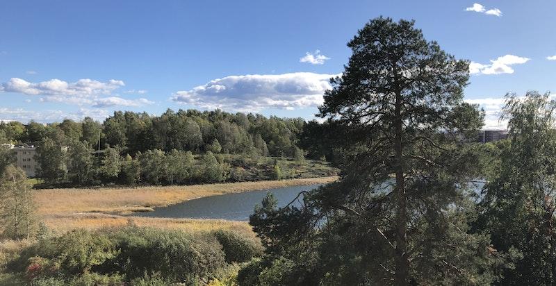 Utsikten mot Holtekilen.