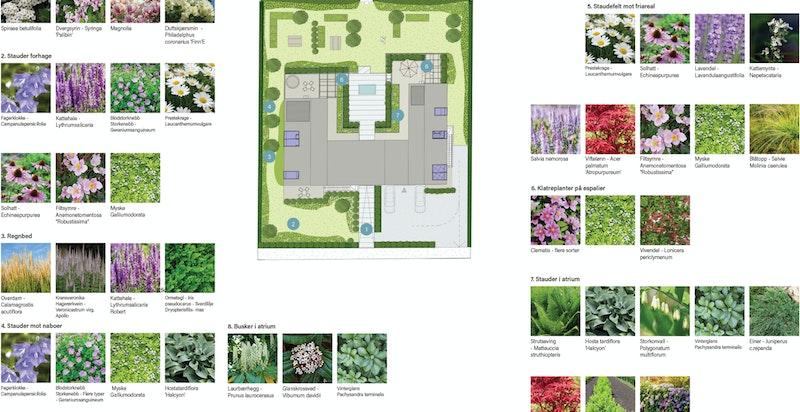 Planteplan til fellesområdene