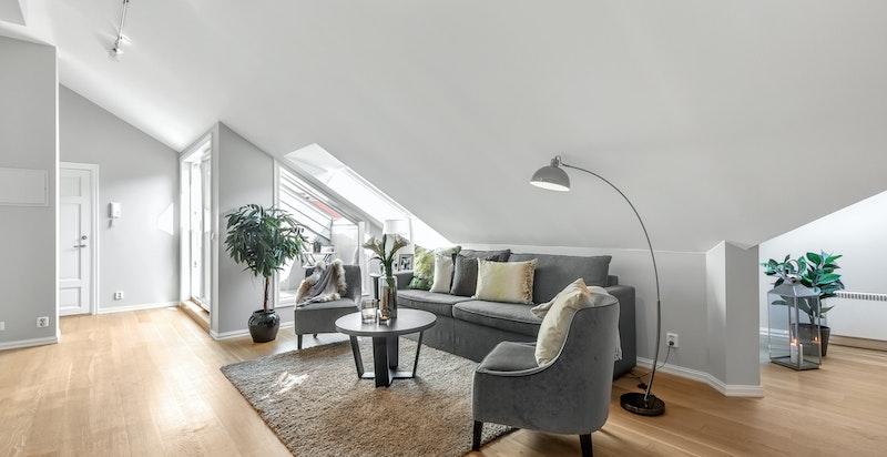 Stue med adkomst til takterrasse
