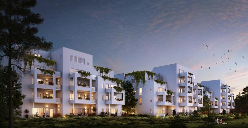 Rolfsbukta Terrasse får en moderne arkitektur tegnet av Kari Nissen Brodtkorb.