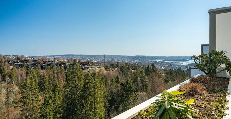 Panoramautsikt mot både skog, by og fjord