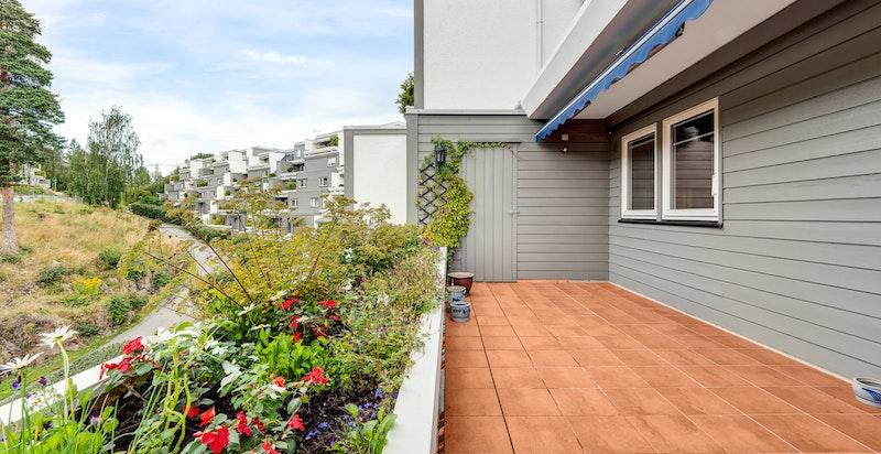 Solrik vestvendt terrasse med utsyn mot fellesområdene