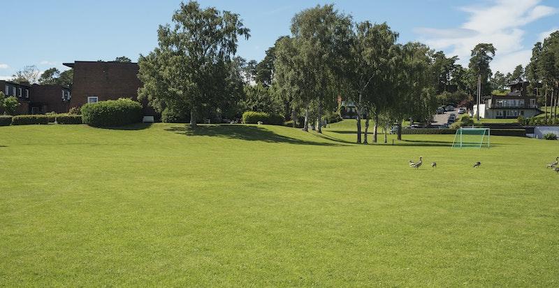 Store felles grøntområder for beboerne i Bygdøylund.