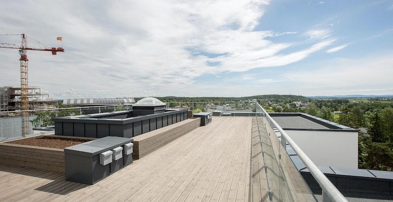 Felles takterrasse på ca. 200 kvm med gode sol- og utsiktsforhold!