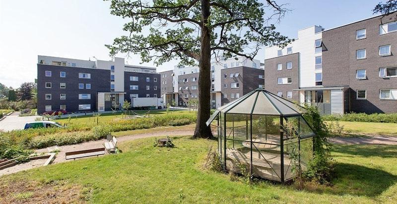 Arneberg Hage - hyggelige grøntarealer i bakgården