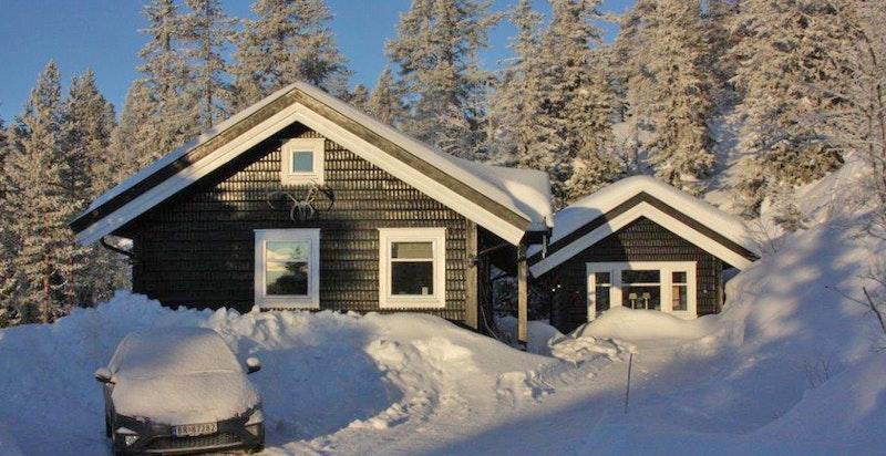 Vinter på Kvitsteinåsen