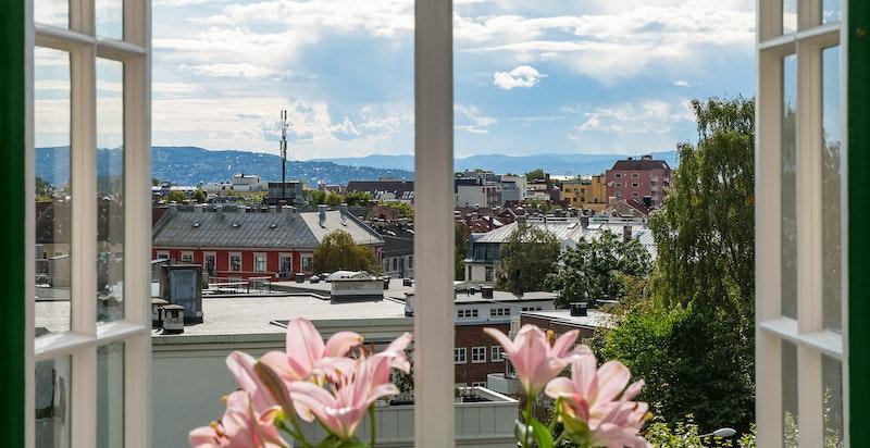 Utsikt fra stuen mot syd/vest