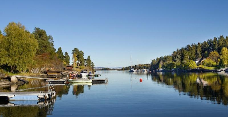 Fine forhold inn fjorden