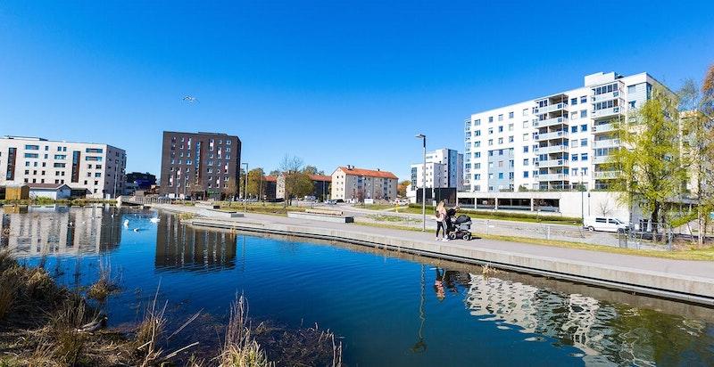 Teglverksdammen - et helt nytt parkområde for Ensjø og Hasle, beliggende bak Hasle Torg med sitteplasser, bål/grillplasser og idylliske omgivelser.