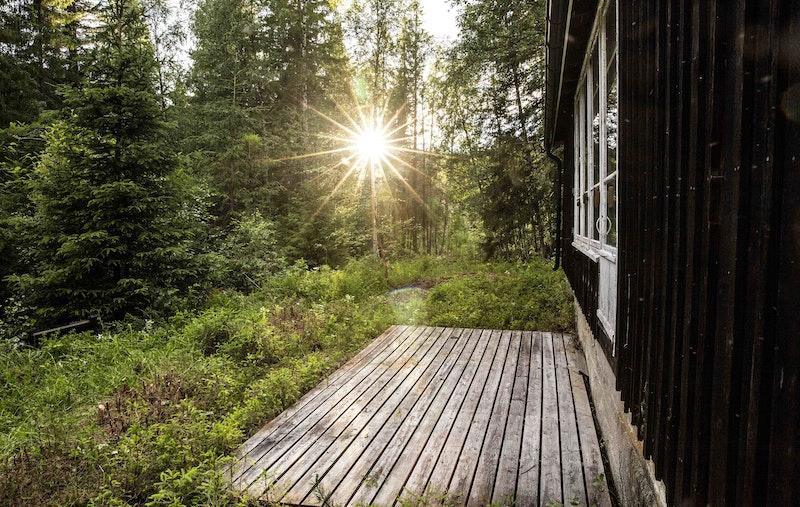 Enkel hytte i skogen nær Norefjell