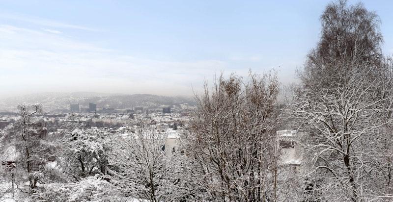 Utsikt med Oslo som bakgrunn...