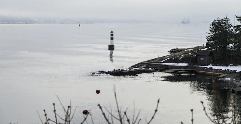 En fredelig formiddagsstund ved Taterholmen, en vinterdag i januar