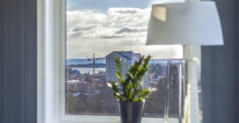 Ustikt fra sofakroken og rett ut i fjorden