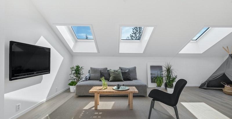 Rikelig med lys fra både vertikale vinduer og Veluxvinduer