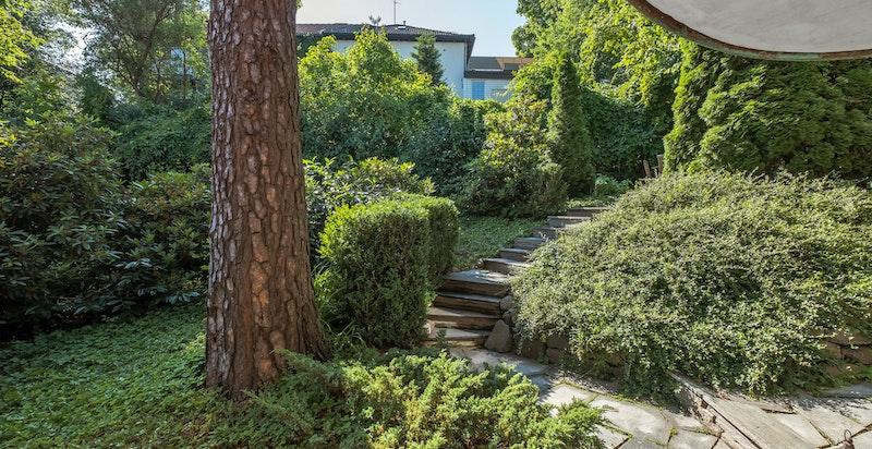 Den frodige hagen er nydelig opparbeidet med plen og prydbusker