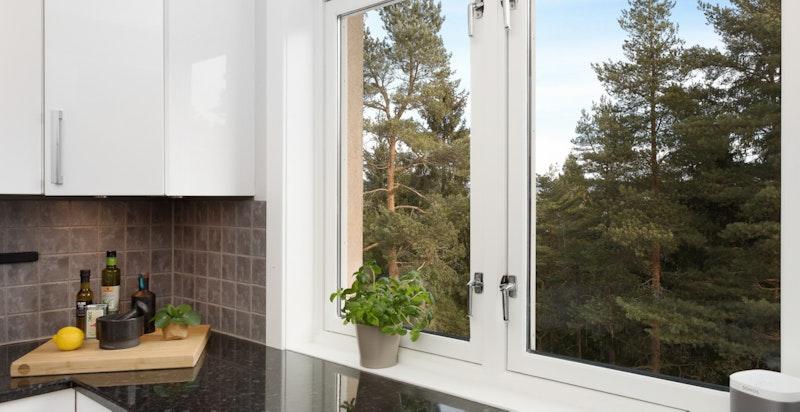Uskjermet utsikt fra kjøkkenvinduet mot grøntområder
