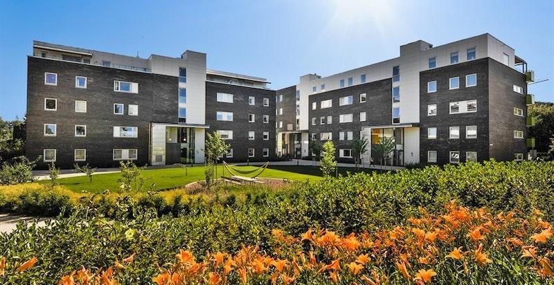 Arneberg Hage - et sentralt, rolig og hyggelig sted å bo