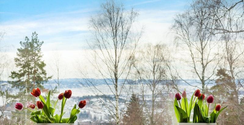 Flott utsikt (fjordutsikt), spesielt på vinterstid