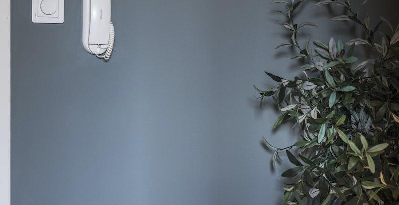 Ved siden av inngangsdøren er det montert callinganlegg. Eget teknisk skap i vegg for å skjule sikringer og dekoder.