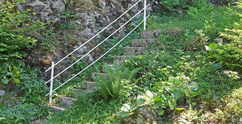 Trapp ned til brygga