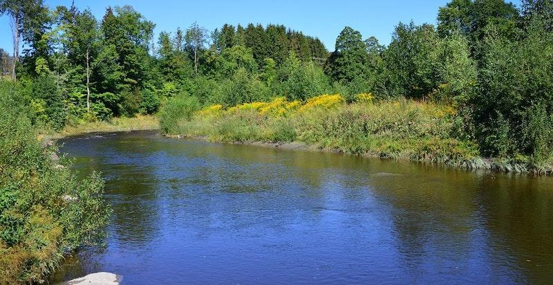 Flott natur rundt Lier Hageby