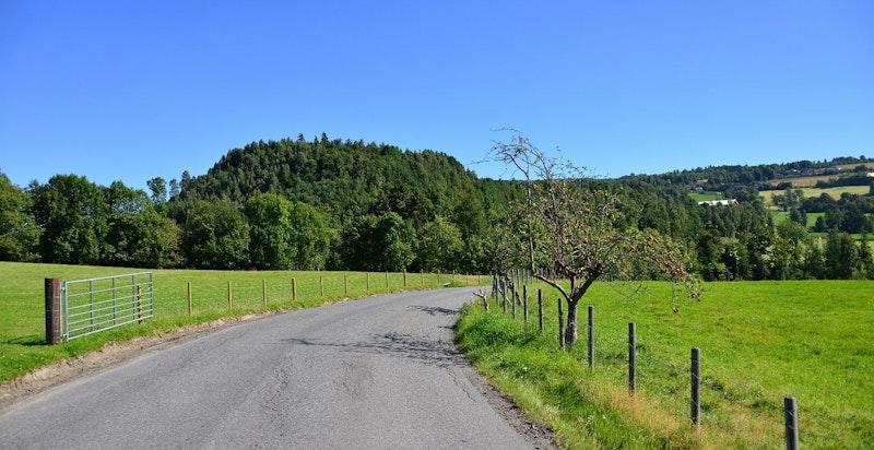 Landlig idyll ved Lier Hageby