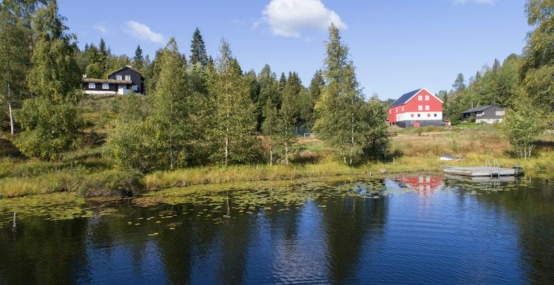 Langebrutjern - her kan man bade, fiske ørret, paddle og nyte synet av vannliljer