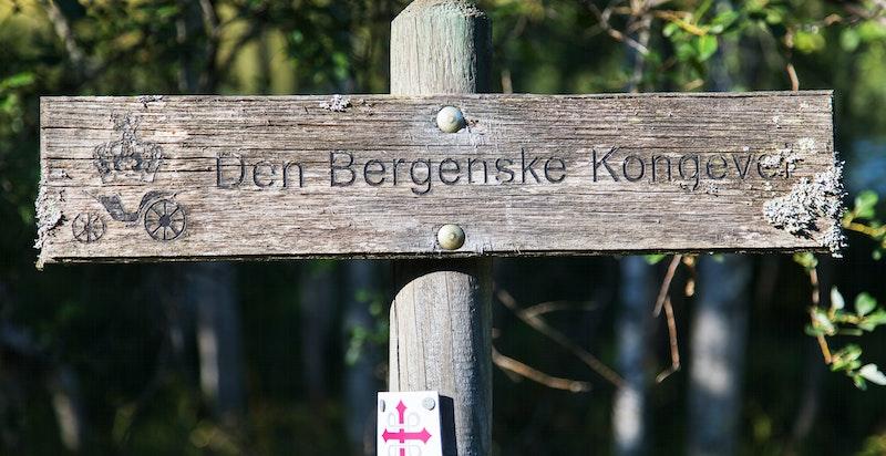 Den Bergenske Kongevei over Krokskogen var den første kjøreveien mellom Bergen og Christiania (Oslo)