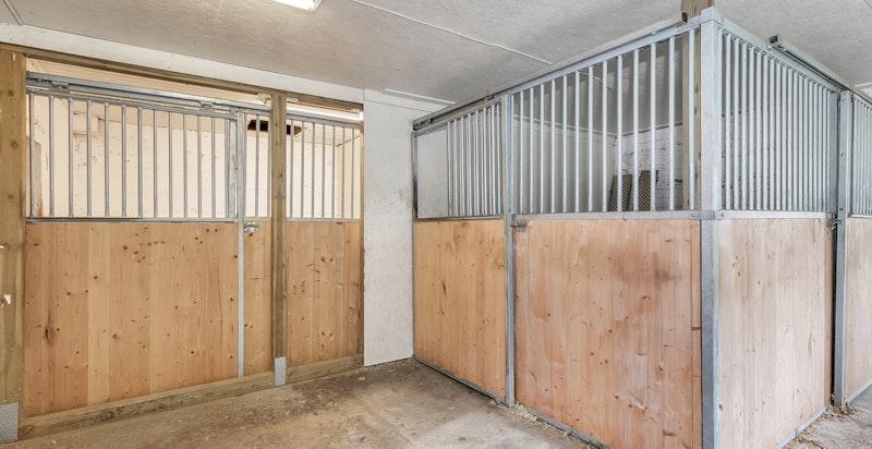Romslig stall - det er per i dag lagt opp for å holde to hester