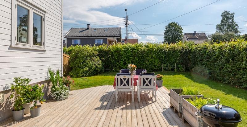Hagen er omkranset av hekk som hindrer innsyn fra veien.