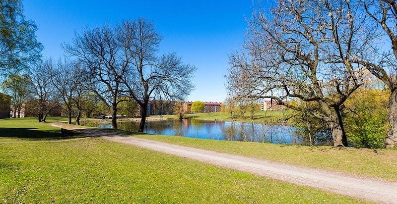 Idylliske Hovindammen er en del av Valle Hovin-området. Herfra kan man rusle eller sykle i hyggelige, grønne omgivelser.