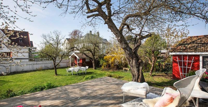 Villa Birkeli er en vakker, idyllisk og stor eiendom fra 1927, over to plan, samt innredet kjeller og loft.