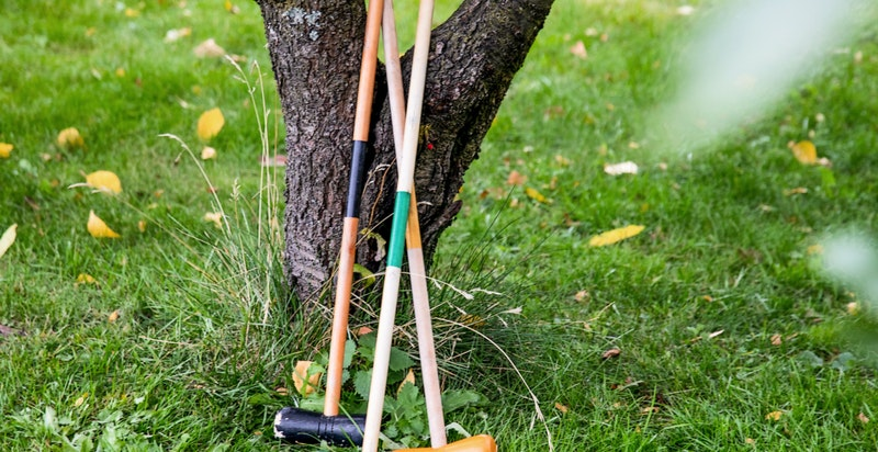 Hagen gir gode muligheter for lek og moro.