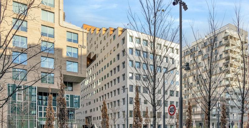 The Carve et utradisjonelt bygg, både med hensyn til utforming og program. Den 15 etasjer høye bygningen beslaglegger et fotavtrykk på bare 21 ganger 105 meter. Øverst ligger 6000 m2 leiligheter, med store terrasser vendt mot byen, marka og fjorden