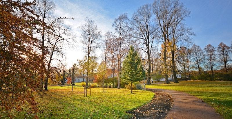 Flotte tur- og rekreasjonsmulighet året rundt i Frognerparken