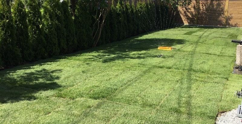 Den solrike tomten er pent opparbeidet med gressplen, busker m.m.