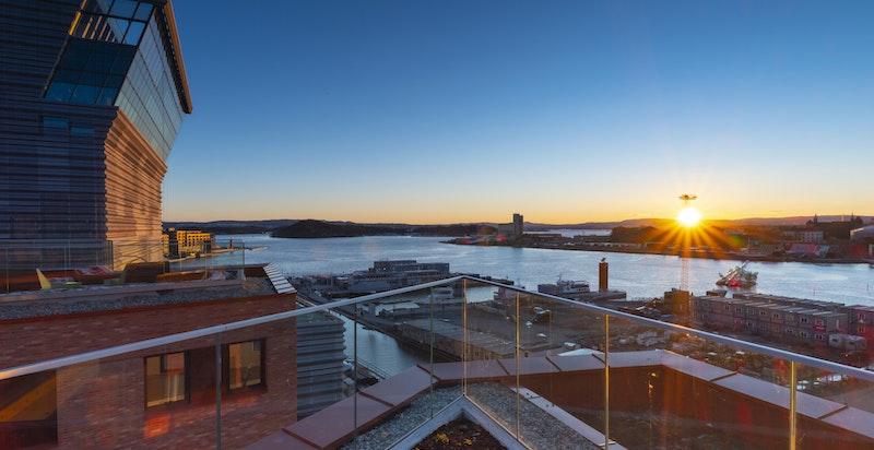 Munch Brygge har fantastiske takterrasser med flere sittegrupper, beplantning og utedusj. Bilde er tatt av takterrassen til nabobygget.