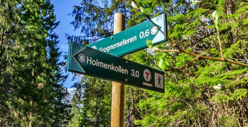 I Blåbærsvingen bor man tett på naturen og har et supert utgangspunkt for løp-, sykkel eller skiturer