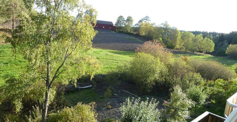 Flott utsikt mot grøntområder
