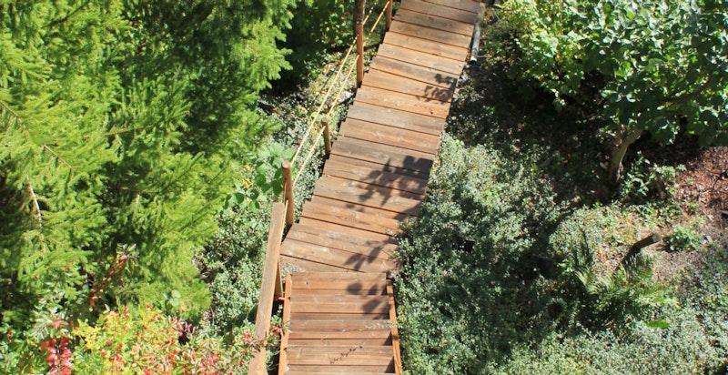 Egen trapp som fører til turområde langs Lysakerelven