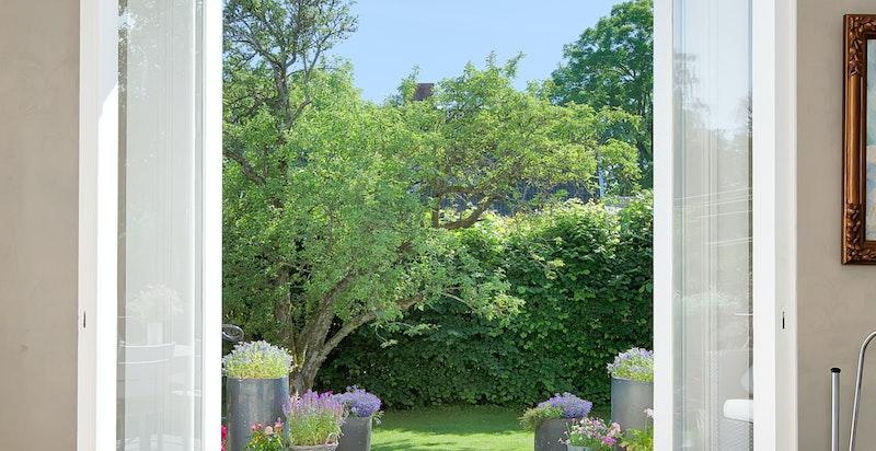 Adkomst til terrasse og hage