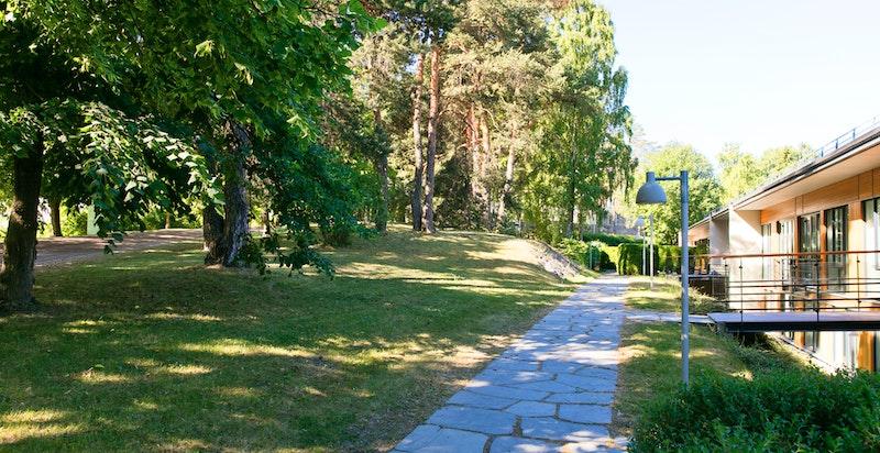 Grønt og frodig rundt hele eiendommen - som ligger like ved Villa Grande