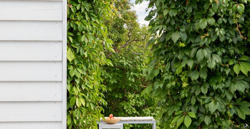 Inngang til hagen