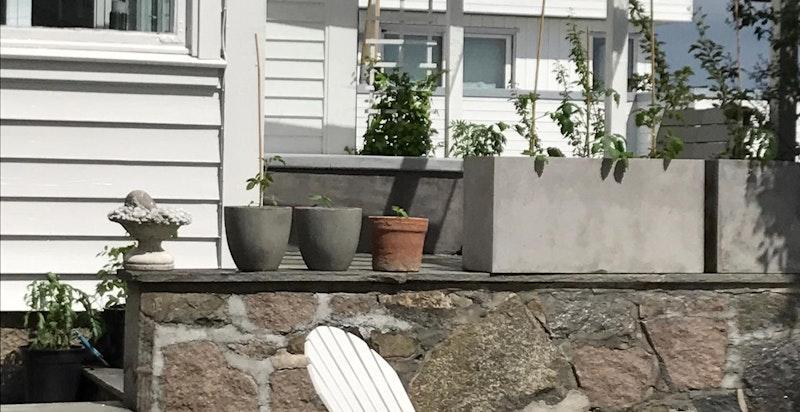 Fra hagen - privat bilde