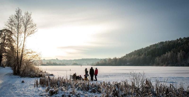 Stemningsfullt vinterbilde av Østensjøvannet