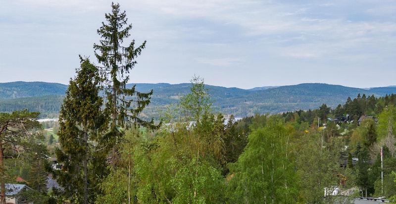 Utsikt fra tomten