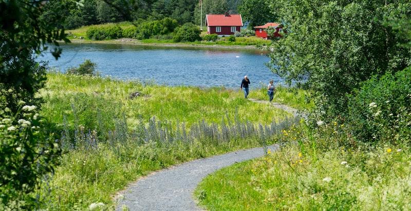 Turområder langs sjøen og ut til populære Storøyodden med badestrender og grøntarealer. Her finnes sjøen på alle kanter.