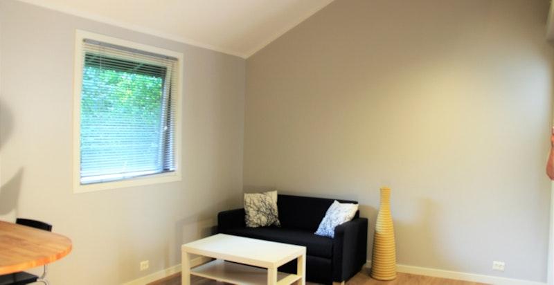 plass til sofa