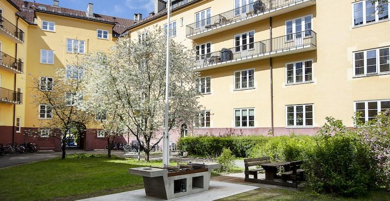 Vøyenløkka borettslag er kjent for sentral men rolig beliggenhet, god økonomi og vedlikehold, samt en svært hyggelig bakgård.