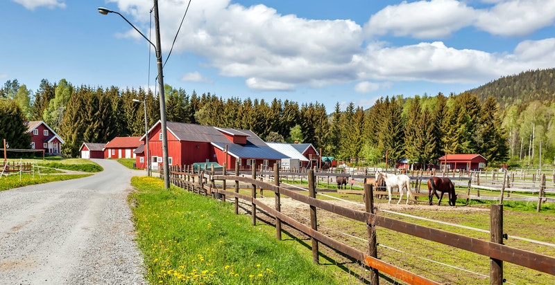 Leiligheten ligger ved det som kan kalles innfallsporten til Sørkedalen, et eldorado for sports- og friluftsinteresserte